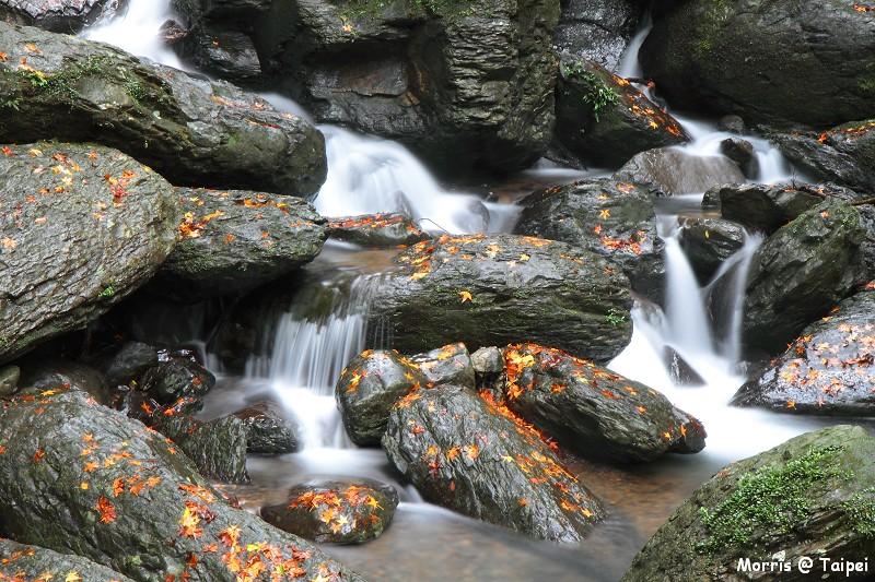 雲森瀑布 楓紅楓落 (17)