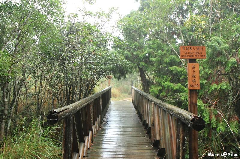 翠峰湖環山步道 (32)