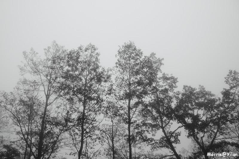 宜蘭太平山 (11)