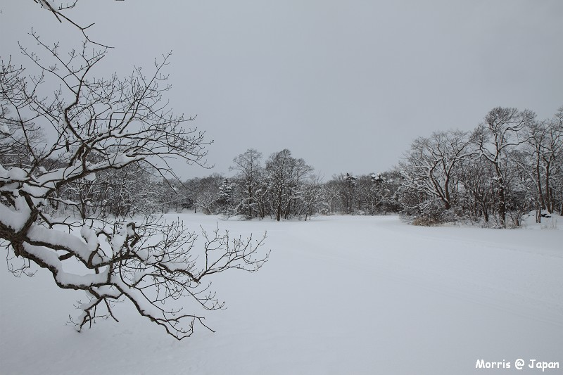 大沼公園 (43)
