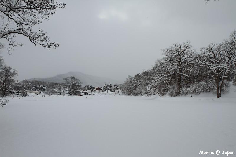 大沼公園 (41)
