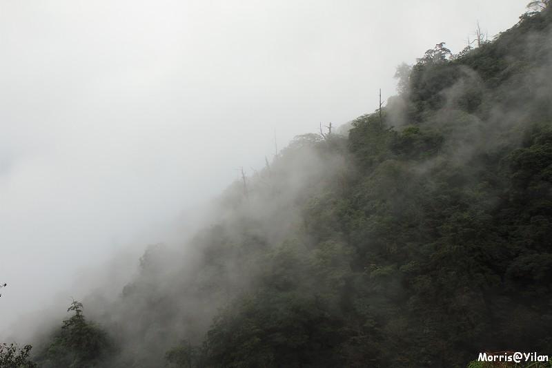 宜蘭太平山 (19)